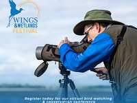 Virtual Wings & Wetlands Festival set for March 24-26